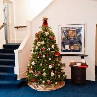 christmas_2011_7