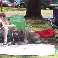 picnic_2012_009