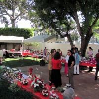 valentine_day_2011_7